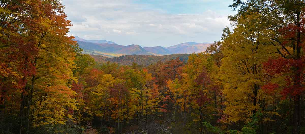 Soak Up Scenic Gatlinburg